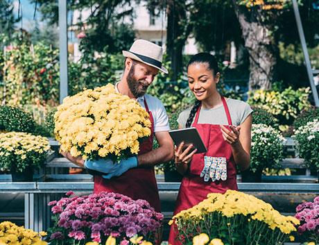 empleados de una floristeria viendo las ventas del mes